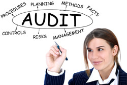 Supplier audit for brand protection
