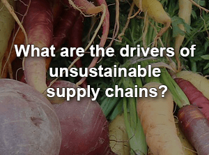 What Are The Drivers Of Unsustainable Supply Chains?
